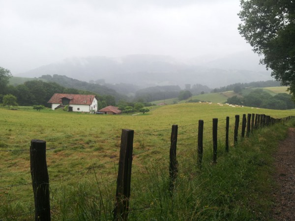 Day 5. Mist is a frequent feature of walking in the Basque country.