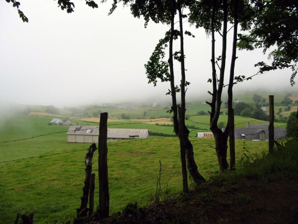 Misty morning in the Basque country.